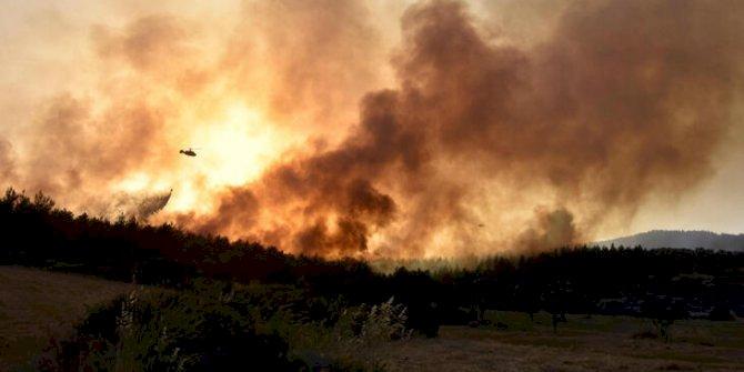 Milas'taki  yangınında 'sabotaj' şüphesi