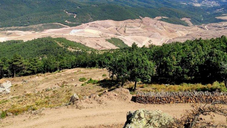 Kaz Dağları'nda doğa için nöbet de tehlike de sürüyor